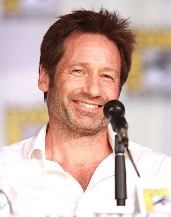 David Duchovny Quotes About Language  AZ Quotes
