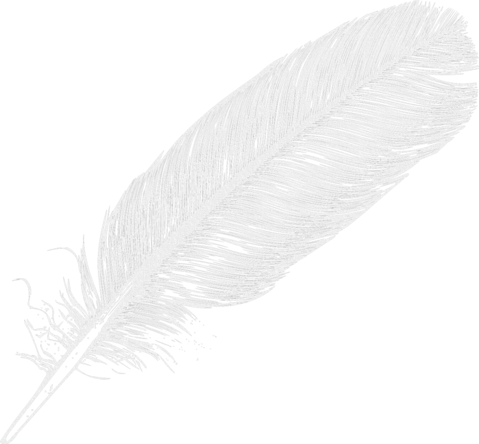 feathers (5) (700x648, 286Kb)