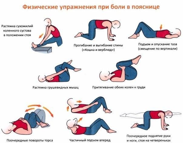 упражнения боль спина (604x471, 166Kb)