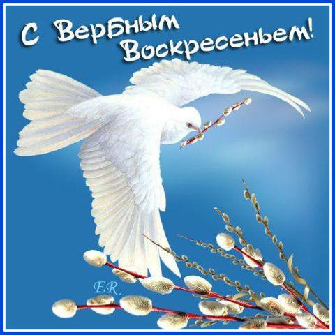 121678855_s_verbnuym_voskresenem (680x680, 55Kb)