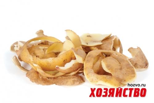 ochistki (500x335, 95Kb)