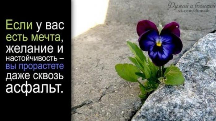 2015-04-05_172903 (700x391, 76Kb)
