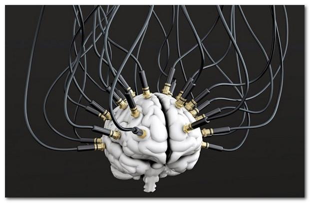 Глава 1 Как промывать мозги друзьям и роботизировать