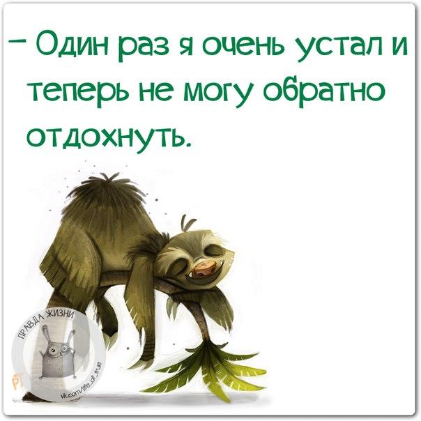 3085196_1417463595_frazki6 (604x604, 54Kb)
