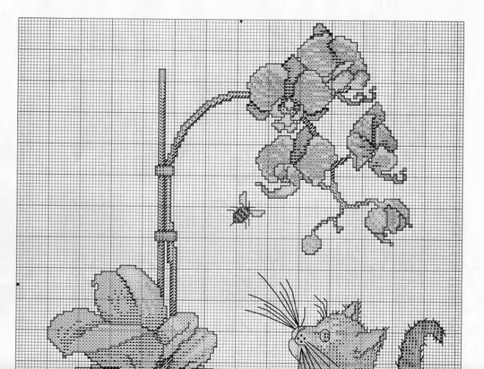 Вышивки схемы с орхидеями 761