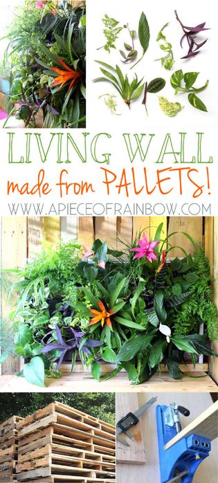 pallet-living-wall-apieceofrainbowblog (315x700, 362Kb)