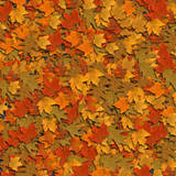 th_AutumnLeaves (160x160, 10Kb)