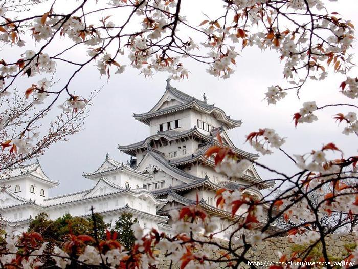 Япония расположена на островах в западной части Тихого океана.  Четыре главных острова - Хоккайдо, Хонсю...