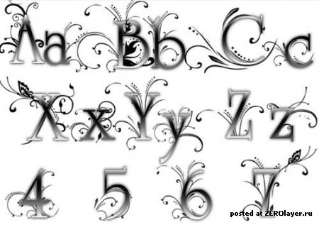 Автора элегантные кисти шрифты для
