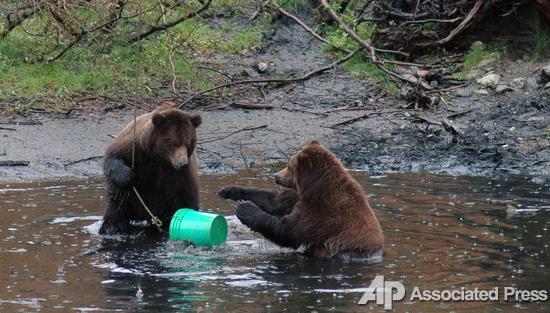 идем ловить медведя на русском