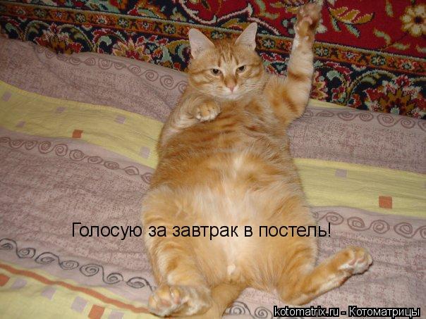 http://img0.liveinternet.ru/images/attach/c/0/35/227/35227872_1226655240_D.jpg