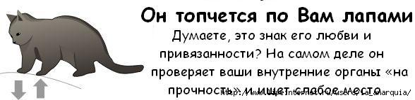 1226662352_cat_02 (588x143, 19Kb)