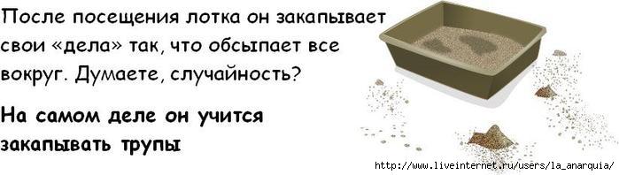 1226662361_cat_03 (699x198, 25Kb)