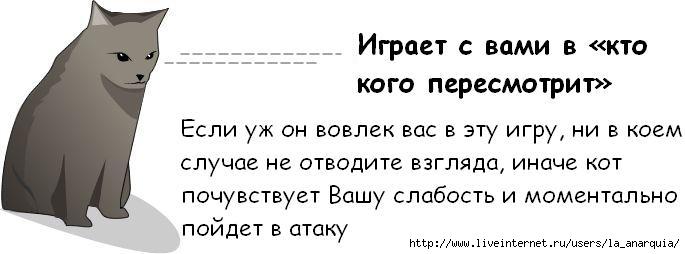 1226662368_cat_04 (685x254, 28Kb)