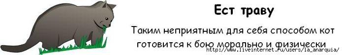 1226662383_cat_06 (695x112, 12Kb)