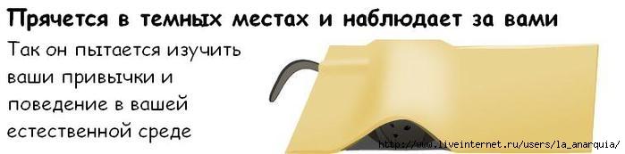 1226662393_cat_07 (699x173, 17Kb)