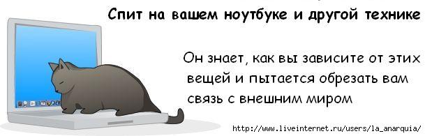 1226662401_cat_08 (609x195, 19Kb)