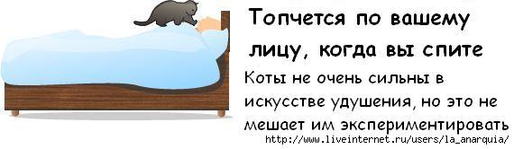 1226662409_cat_09 (570x166, 18Kb)
