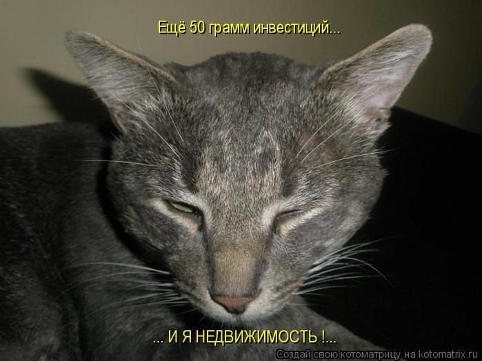 http://img0.liveinternet.ru/images/attach/c/0/35/387/35387553_1226926193_dU.jpg