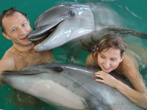Фото и видео дельфинов, дельфинариев.  Плавание с дельфинами в...