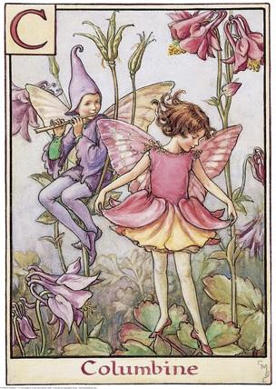 Аквилегия в моем саду.  Цветы аквилегии поникающие, колоколообразные, обычно двух цветов, например, розового и...