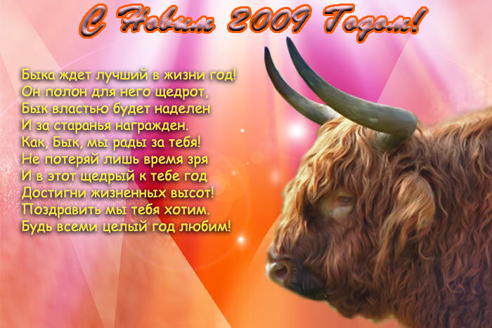 Что ожидает быков в новом году