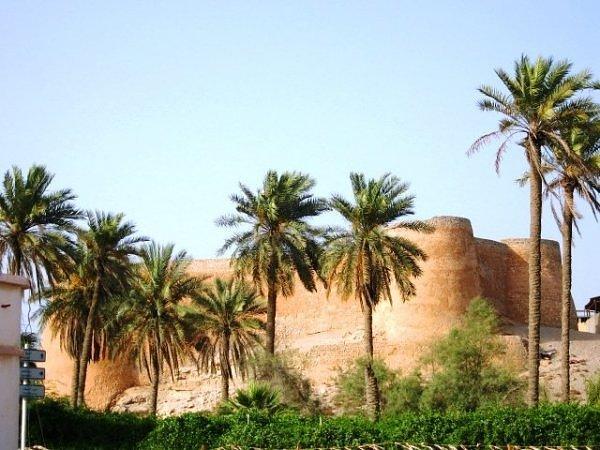 Оазисы – это чудо природы посреди безжизненной пустыни!