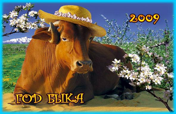 год быка (591x383, 81Kb)