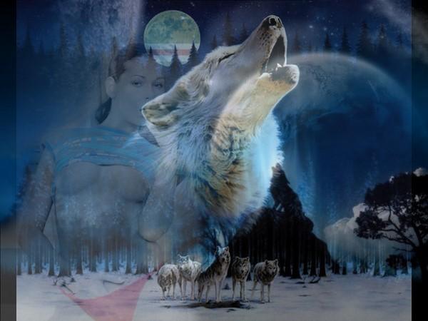 Из рук своих ты угощала волка