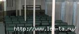 Теплоход Гареев Конференц-зал