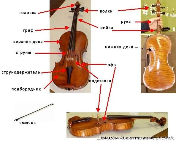 Музыкальные инструменты №2 - Скрипка