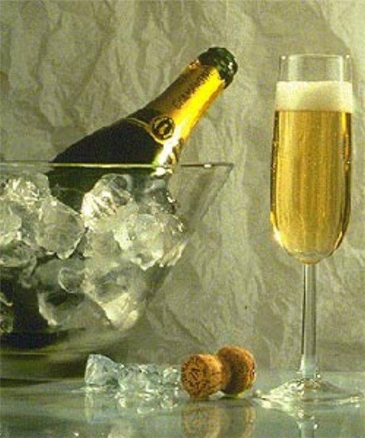 Сосет и пьет шампанское 16 фотография