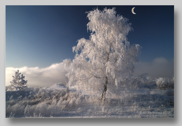 http://img0.liveinternet.ru/images/attach/c/0/37/947/37947196_Vikt__Nad_sedoyu_pelenoyu_vsyo_zastuylo_v_belom_sne.jpg