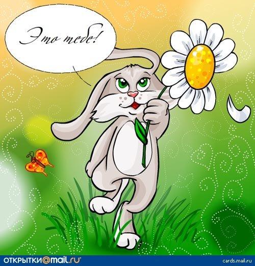 Напиши поздравительную открытку кролику какое ты выберешь