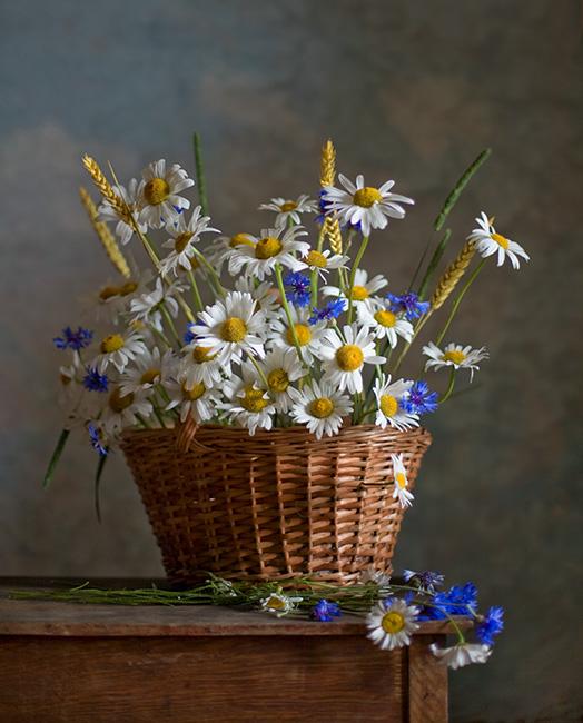 Девочки, эти цветы для вас!