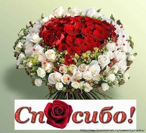 Спасибо букет цветов картинки