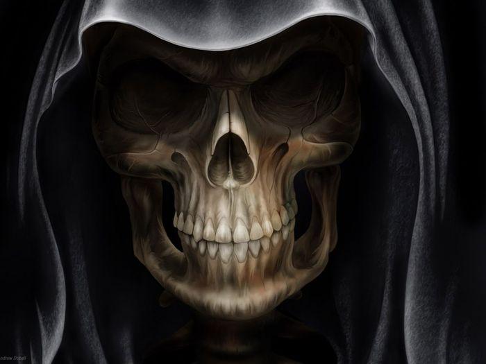 скелеты картинки: