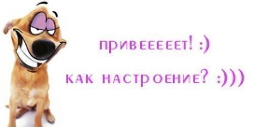 (500x250, 18Kb)