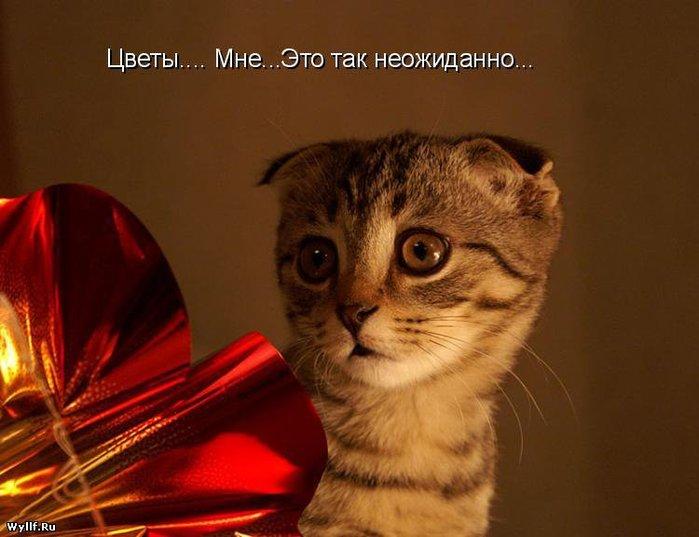 http://img0.liveinternet.ru/images/attach/c/0/39/127/39127116_1233673810_1be5a1f5fe4c.jpg