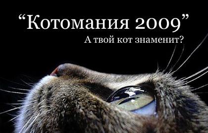 Конкурс котов и кошек