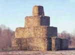 Масленица в деревне Николо-Ленивец Ленивка-Тур 991-57-25