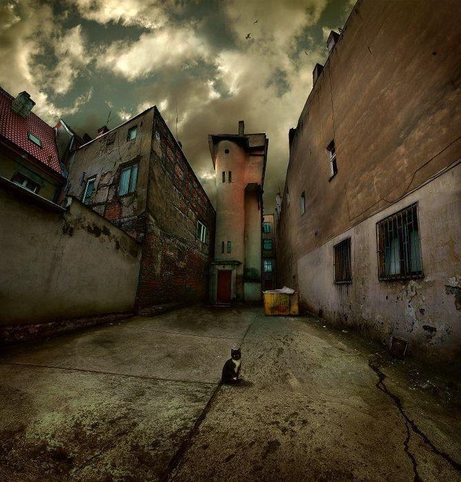 http://img0.liveinternet.ru/images/attach/c/0/39/944/39944585_2.jpg