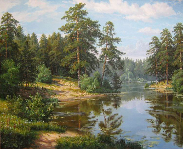 Озеро в сосновом лесу.