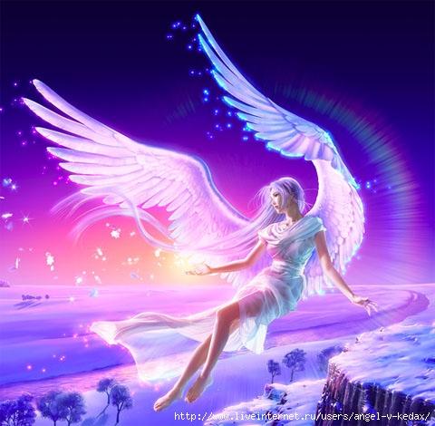 angel (480x470, 86Kb)