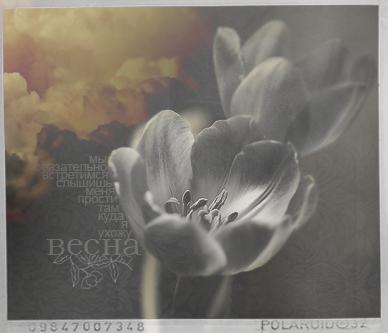 http://img0.liveinternet.ru/images/attach/c/0/40/600/40600089_vesna.jpg