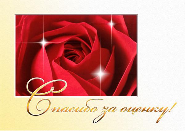 за оценку роза (600x427, 77Kb)