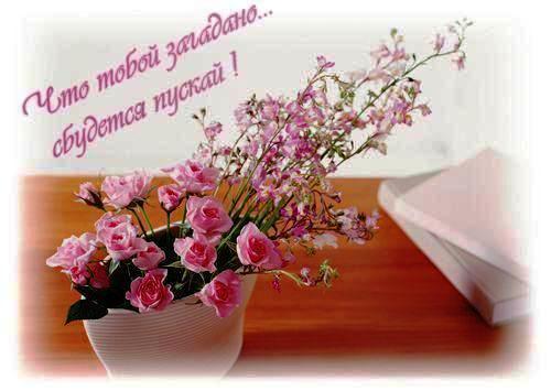 http://img0.liveinternet.ru/images/attach/c/0/40/996/40996785_0ccbd18a86aa.jpg