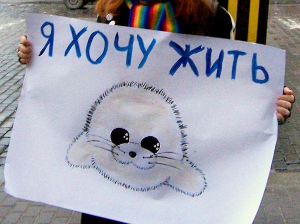 http://img0.liveinternet.ru/images/attach/c/0/41/146/41146341_20071213134940.jpg