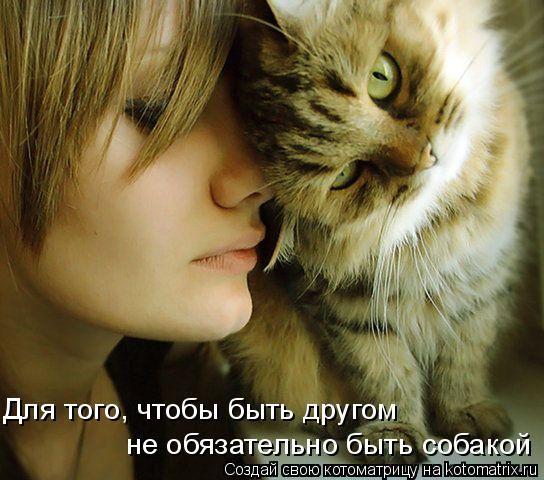 http://img0.liveinternet.ru/images/attach/c/0/41/79/41079384_img_4987759_2946_0.jpg