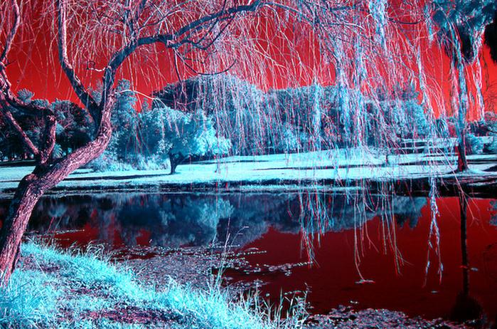 Нереальной красоты природа